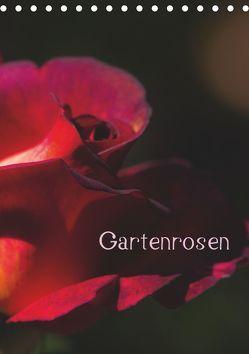Gartenrosen (Tischkalender 2019 DIN A5 hoch) von Renken,  Erwin