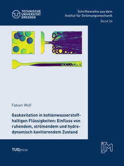 Gaskavitation in kohlenwasserstoffhaltigen Flüssigkeiten: Einfluss von ruhendem, strömendem und hydrodynamisch kavitierendem Zustand von Wolf,  Fabian