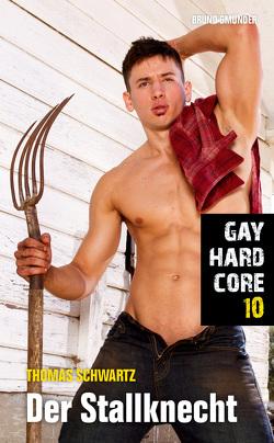 Gay Hardcore 10: Der Stallknecht von Schwartz,  Thomas