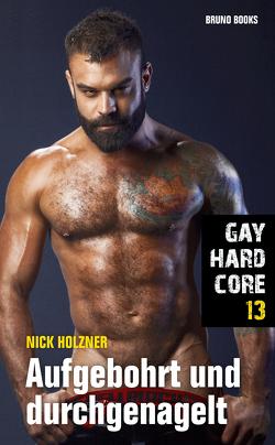 Gay Hardcore 13: Aufgebohrt und durchgenagelt von Holzner,  Nick