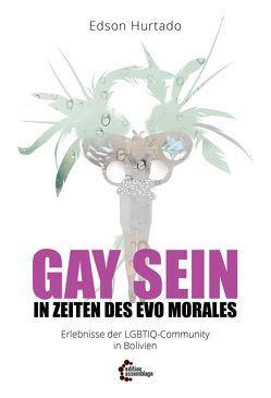 Gay sein in Zeiten des Evo Morales von Danielsen,  Swintha, Hurtado,  Edson, Yücel,  Elif