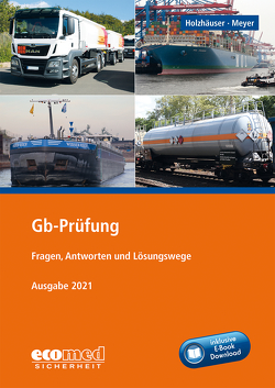 Gb-Prüfung inklusive E-Book von Holzhäuser,  Jörg, Meyer,  Irena