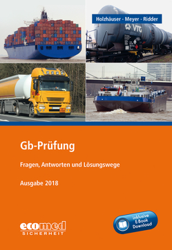 Gb-Prüfung inklusive E-Book von Holzhäuser,  Jörg, Meyer,  Irena, Ridder,  Klaus