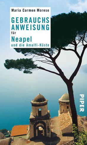 Gebrauchsanweisung für Neapel und die Amalfi-Küste von Morese,  Maria Carmen