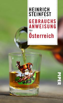 Gebrauchsanweisung für Österreich von Steinfest,  Heinrich