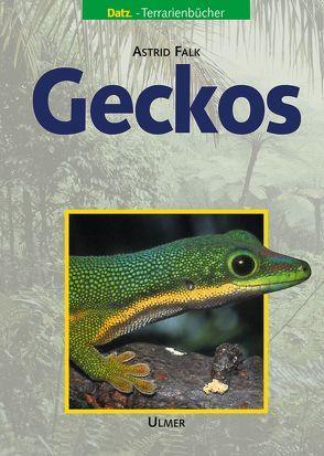 Geckos von Falk,  Astrid