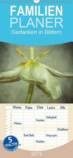 Gedanken in Bildern – Familienplaner hoch (Wandkalender 2019 , 21 cm x 45 cm, hoch) von Nitzold-Briele,  Gudrun