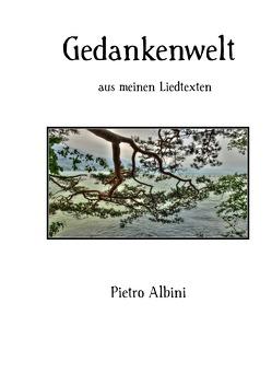 Gedankenwelt von Albini,  Pietro