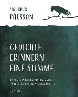 Gedichte erinnern eine Stimme von Gíslason,  Jón Thor, Schiffer,  Wolfgang, Sigurður,  Pálsson