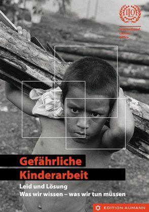 Gefährliche Kinderarbeit – Leid und Lösung