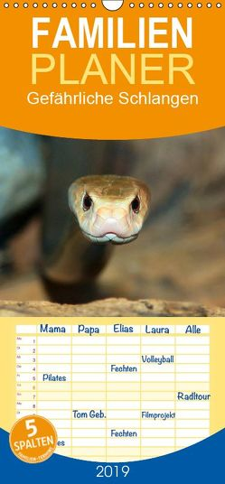Gefährliche Schlangen – Familienplaner hoch (Wandkalender 2019 , 21 cm x 45 cm, hoch) von Herzog,  Michael