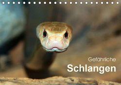 Gefährliche Schlangen (Tischkalender 2019 DIN A5 quer) von Herzog,  Michael