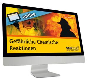 Buy Die Entstehung Des Neuen In Der Adoleszenz: Individuation, Generativität