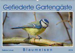 Gefiederte Gartengäste – Blaumeisen (Wandkalender 2019 DIN A2 quer) von Löwer,  Sabine