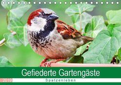 Gefiederte Gartengäste – Spatzenleben (Tischkalender 2019 DIN A5 quer) von Löwer,  Sabine
