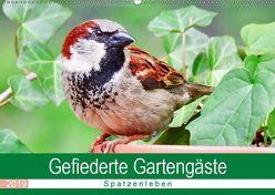 Gefiederte Gartengäste – Spatzenleben (Wandkalender 2019 DIN A2 quer) von Löwer,  Sabine