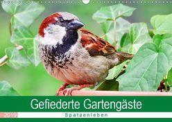 Gefiederte Gartengäste – Spatzenleben (Wandkalender 2019 DIN A3 quer) von Löwer,  Sabine