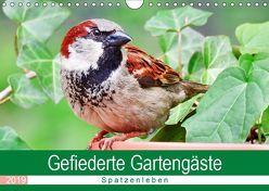 Gefiederte Gartengäste – Spatzenleben (Wandkalender 2019 DIN A4 quer) von Löwer,  Sabine