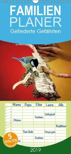 Gefiederte Gefährten – Familienplaner hoch (Wandkalender 2019 , 21 cm x 45 cm, hoch) von Hultsch,  Heike