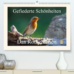 Gefiederte Schönheiten – Das Rotkehlchen (Premium, hochwertiger DIN A2 Wandkalender 2021, Kunstdruck in Hochglanz) von Poetsch,  Rolf