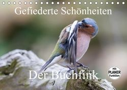 Gefiederte Schönheiten – Der Buchfink (Tischkalender 2019 DIN A5 quer) von Poetsch,  Rolf