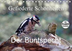 Gefiederte Schönheiten – Der Buntspecht (Tischkalender 2019 DIN A5 quer) von Poetsch,  Rolf