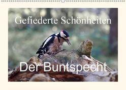Gefiederte Schönheiten – Der Buntspecht (Wandkalender 2018 DIN A2 quer) von Poetsch,  Rolf