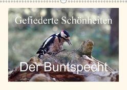Gefiederte Schönheiten – Der Buntspecht (Wandkalender 2018 DIN A3 quer) von Poetsch,  Rolf