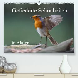 Gefiederte Schönheiten in Aktion (Premium, hochwertiger DIN A2 Wandkalender 2020, Kunstdruck in Hochglanz) von Poetsch,  Rolf