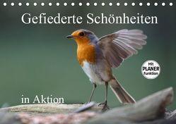 Gefiederte Schönheiten in Aktion (Tischkalender 2019 DIN A5 quer) von Poetsch,  Rolf