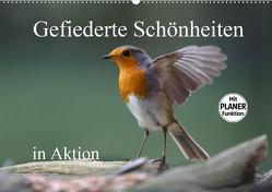Gefiederte Schönheiten in Aktion (Wandkalender 2020 DIN A2 quer) von Poetsch,  Rolf
