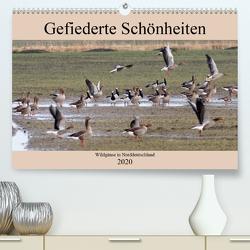 Gefiederte Schönheiten – Wildgänse in Norddeutschland (Premium, hochwertiger DIN A2 Wandkalender 2020, Kunstdruck in Hochglanz) von Poetsch,  Rolf