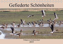 Gefiederte Schönheiten – Wildgänse in Norddeutschland (Tischkalender 2019 DIN A5 quer) von Poetsch,  Rolf