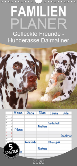Gefleckte Freunde – Hunderasse Dalmatiner – Familienplaner hoch (Wandkalender 2020 , 21 cm x 45 cm, hoch) von Mielewczyk,  Barbara