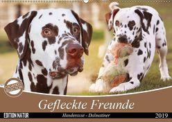 Gefleckte Freunde – Hunderasse Dalmatiner (Wandkalender 2019 DIN A2 quer) von Mielewczyk,  Barbara
