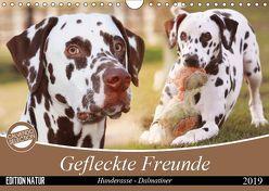 Gefleckte Freunde – Hunderasse Dalmatiner (Wandkalender 2019 DIN A4 quer) von Mielewczyk,  Barbara