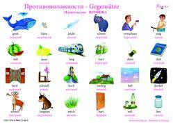 Gegensätze von Katarina,  Kostjuschenko
