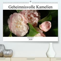 Geheimnisvolle Kamelien (Premium, hochwertiger DIN A2 Wandkalender 2020, Kunstdruck in Hochglanz) von Kruse,  Gisela
