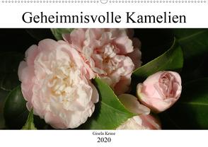 Geheimnisvolle Kamelien (Wandkalender 2020 DIN A2 quer) von Kruse,  Gisela