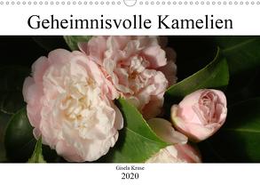 Geheimnisvolle Kamelien (Wandkalender 2020 DIN A3 quer) von Kruse,  Gisela