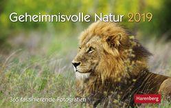 Geheimnisvolle Natur – Kalender 2019 von Dilling,  Jochen, Harenberg