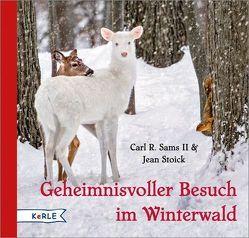 Geheimnisvoller Besuch im Winterwald von Sams II.,  Carl R., Stoick,  Jean, Wendel,  Stefan