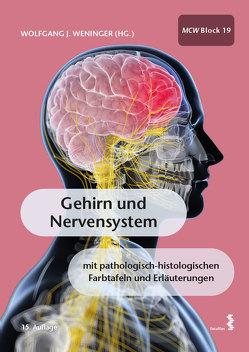 Gehirn und Nervensystem von Weninger,  Wolfgang