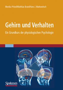 Gehirn und Verhalten von Brand,  Matthias, Markowitsch,  J., Pritzel,  Monika