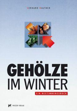 Gehölze im Winter von Walther,  Gerhard