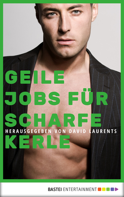 Geile Jobs für scharfe Kerle von Alexander,  Barry, Christian,  M., Currier,  Jameson, Evans,  David, Forster,  Phil, Jeffers,  Alex, Killian,  Kevin, Laurents,  David, McCabe,  Adam, Santi,  Dominic, Shewey,  Don