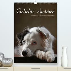 Geliebte Aussies – Australian Shepherds im Portrait (Premium, hochwertiger DIN A2 Wandkalender 2020, Kunstdruck in Hochglanz) von Behr,  Jana