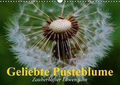 Geliebte Pusteblume. Zauberhafter Löwenzahn (Wandkalender 2019 DIN A3 quer) von Stanzer,  Elisabeth
