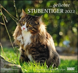 … geliebte Stubentiger 2022 – DUMONT Wandkalender – mit den wichtigsten Feiertagen – Format 38,0 x 35,5 cm