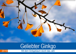Geliebter Ginkgo (Wandkalender 2019 DIN A2 quer) von Jäger,  Anette